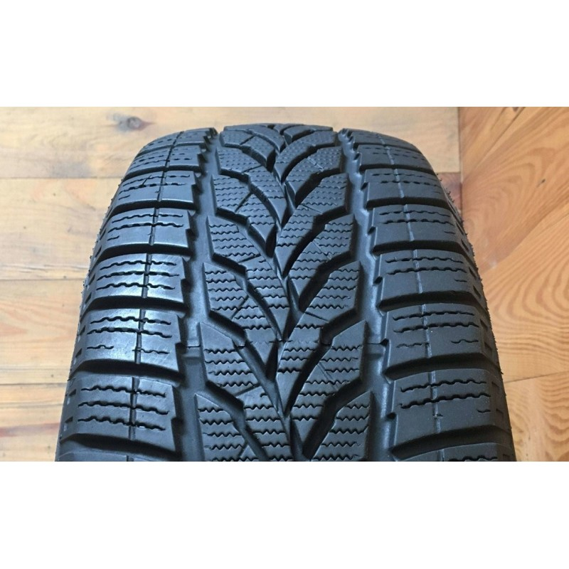 195/55R15 Interstate Winter IWT-2